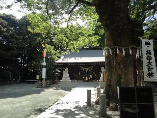 新田神社の画像1