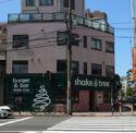 SHAKE TREE