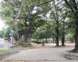 北新井公園