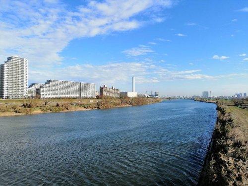 多摩川緑地の画像
