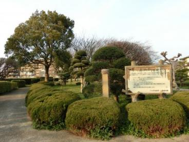 大和田新田樹木見本園の画像1