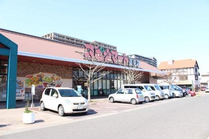 スピナ 高見店の画像1