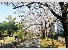 仙台堀川公園の画像1
