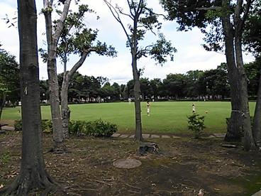 梅園公園の画像1