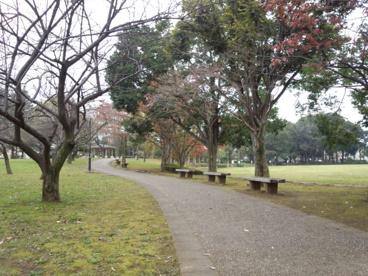 梅園公園の画像2