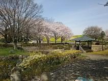 葛西親水公園