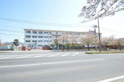 八枝小学校の画像3