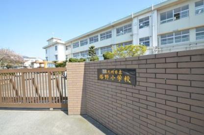 塔野小学校の画像1