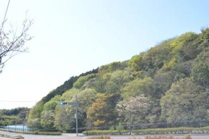 瀬板の森公園南口の画像1