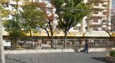船堀第二保育園