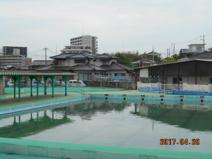 沖田プール