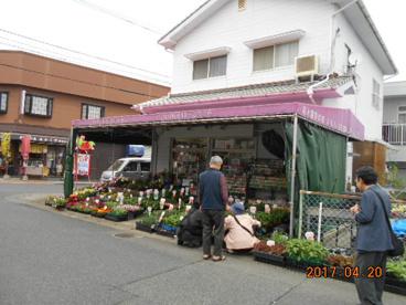花と園芸の店 こにしの画像1