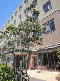いずみ記念病院の画像1
