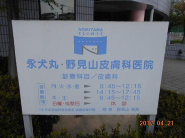 永犬丸野見山医院の画像1