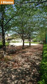 神園公園の画像1