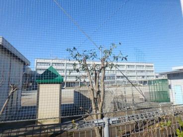 川崎市立高津小学校の画像5