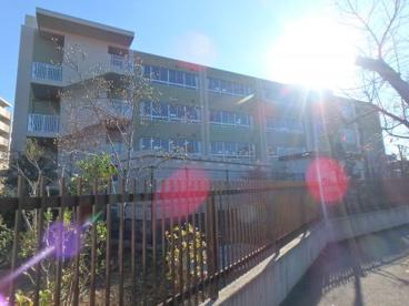 川崎市立東高津小学校の画像4