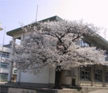 枚岡東小学校の画像1