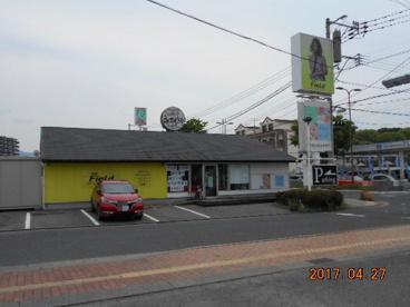 RAY Field 永犬丸店の画像1