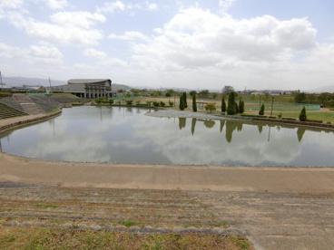 曽我川緑地の画像1