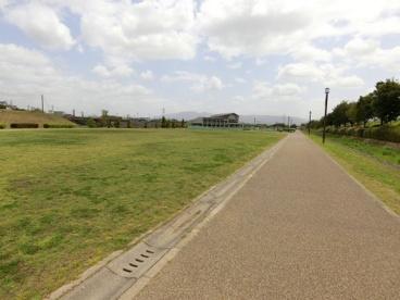 曽我川緑地の画像3