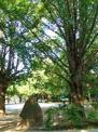 板橋区平和公園