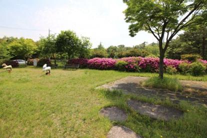 とんがり山南公園の画像4