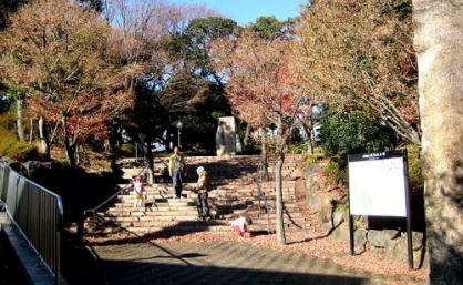 紅葉山公園の画像1
