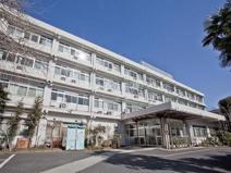 武蔵野病院
