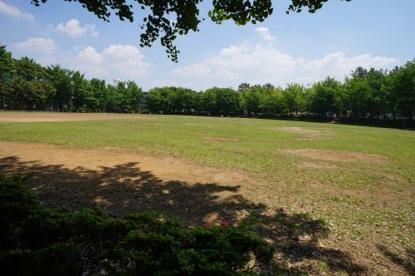 一本松公園の画像2