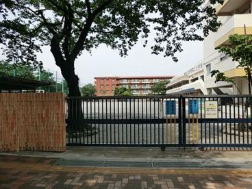 練馬区立練馬第三小学校の画像1