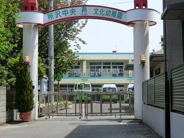 所沢文化幼稚園所沢中央文化幼稚園の画像1
