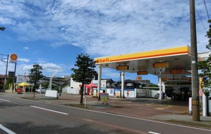 (株)新野商店 豊町給油所の画像1