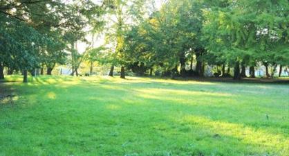 みつわ台第1公園の画像1