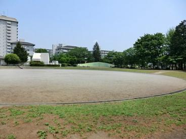 緑町中央公園の画像1