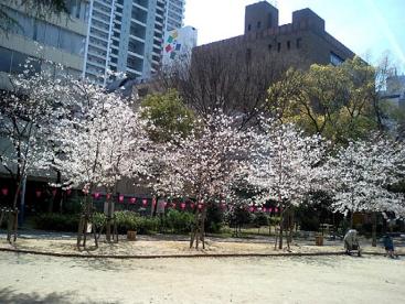 新町北公園の画像1
