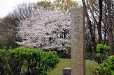 赤塚城址公園