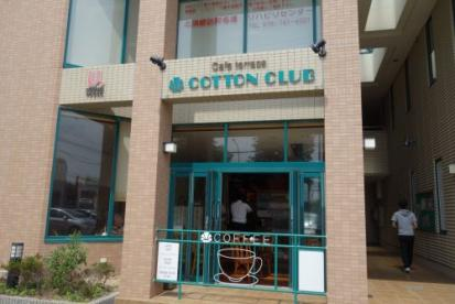 COTTON CLUBの画像1