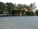 習志野台8丁目公園