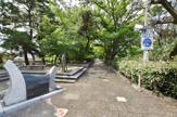 夙川さくら道