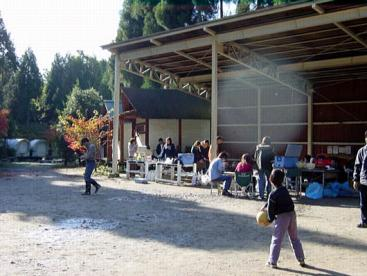大森リゾートキャンプ場の画像3