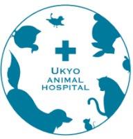 右京動物病院の画像