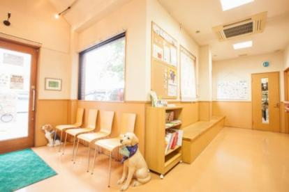 西京極どうぶつ病院の画像3