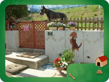 わんの庭の画像1