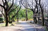 都立赤塚公園 大門地区