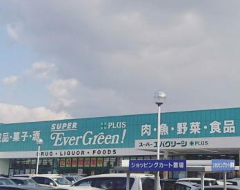 スーパーエバグリーンプラス和歌山北インター店の画像2