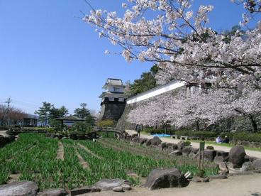 大村公園の画像1