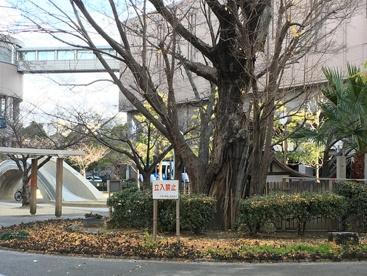 東天満公園の画像1