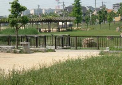 船堂公園の画像3