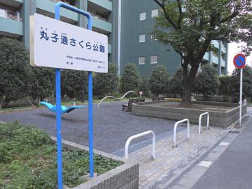 丸子通さくら公園の画像1